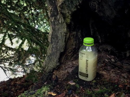 antidote_cleanse_gingerade_coultique