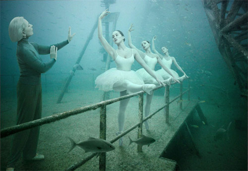 Andreas Franke – The Vandenberg – Life below the Surface