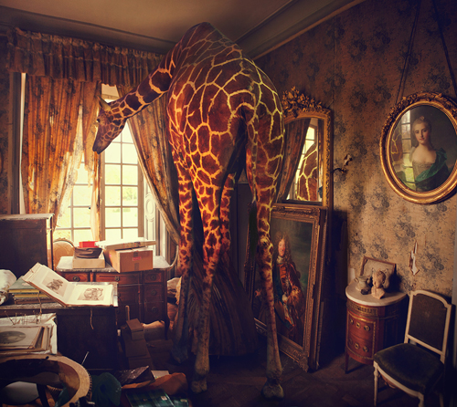 miss_aniela_11_coultique.jpg