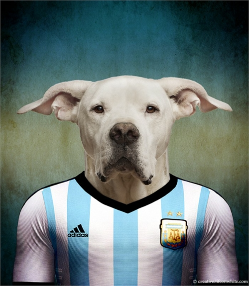 world_cup_dogs_argentina_dogo_ argentino_coultique
