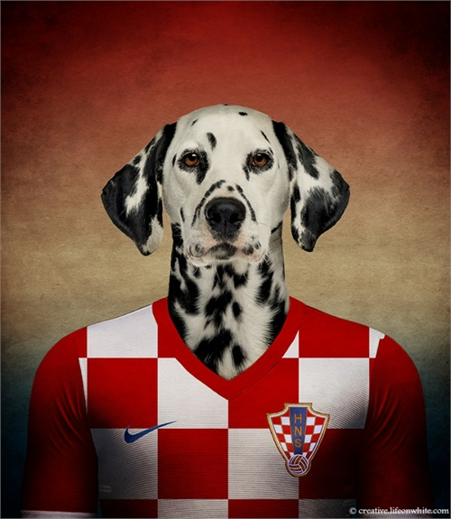 world_cup_dogs_croatia_dalmatian_coultique