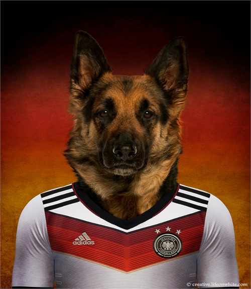 world_cup_dogs_germany_german_shepherd_coultique
