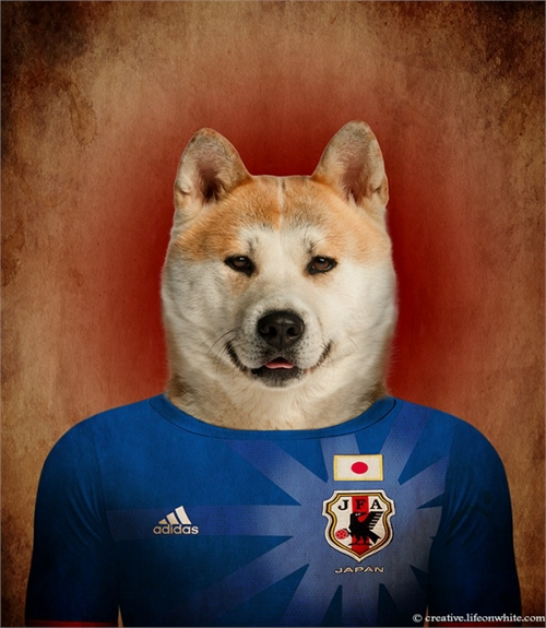 world_cup_dogs_japan_akita_inu_coultique