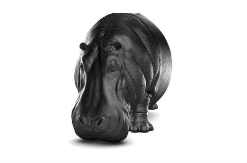 máximo_riera_the_hippopotamus_chair_03_coultique