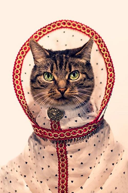 jason_mcgroarty_cat_couture_5_coultique