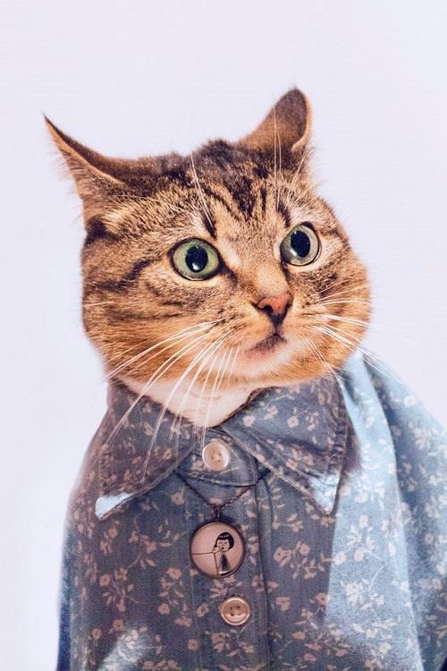 jason_mcgroarty_cat_couture_8_coultique