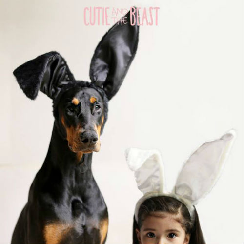 cutie_and_the_beast_14_coultique